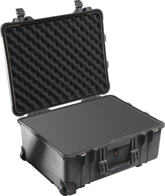 Pelican™ 1560 Case - Foam Example