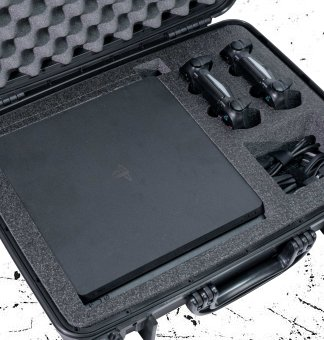 PlayStation 4 Cases